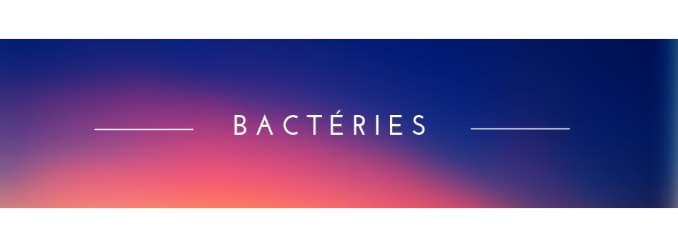 - Bactéries