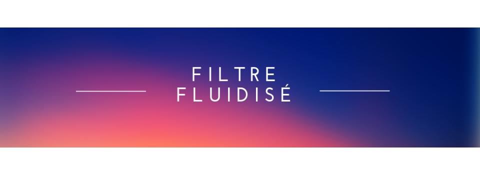 - Filtre fluidisé